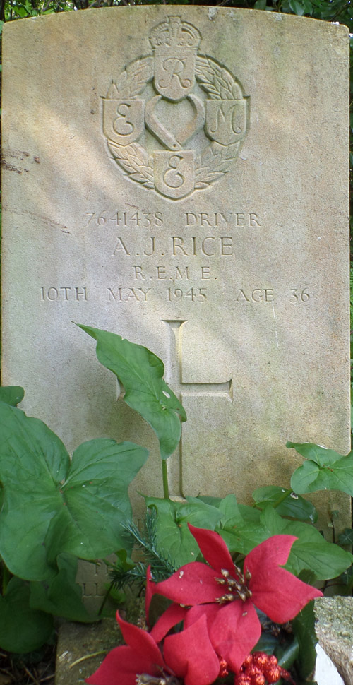 A J Rice