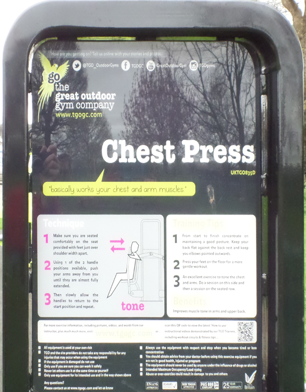 Chest Press