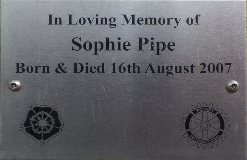 High St  Tree