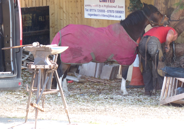 Pony needs shoeing